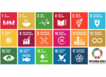 SDGs and cooperatives