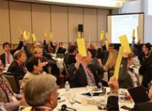 Delegates vote to create a designated youth seat on the CMC Board of Directors